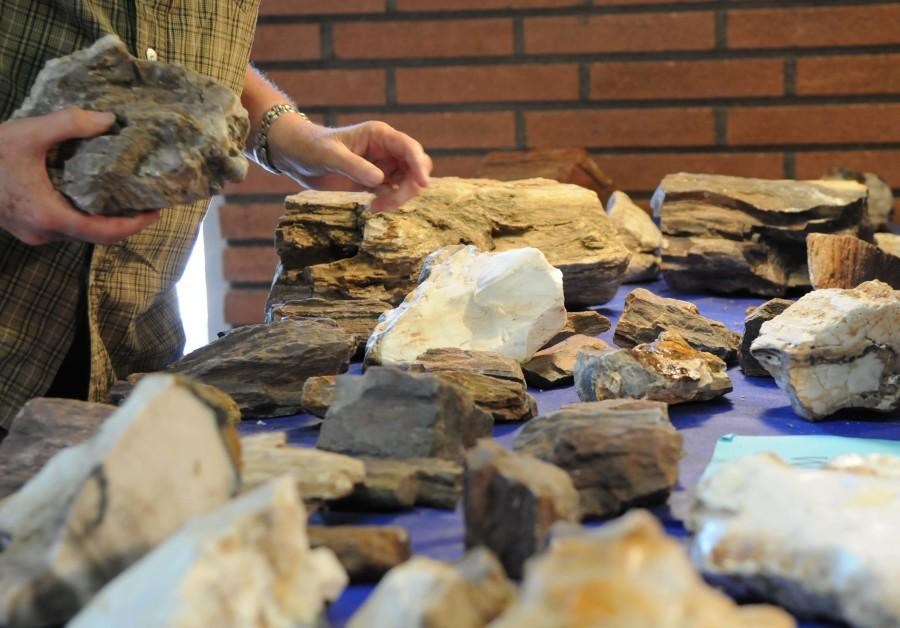 Science club shows face at Annual South Bay Gem and Mineral Show