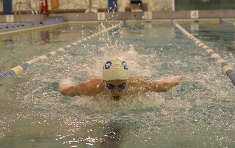 Dedication pays off for record-breaking swimmer