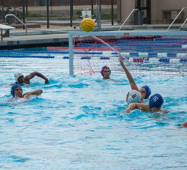 Men's water polo fall in season opener