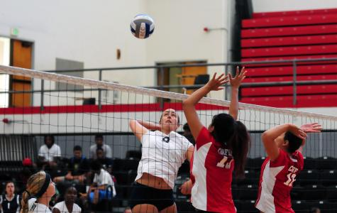 Haney powers volleyball team to win