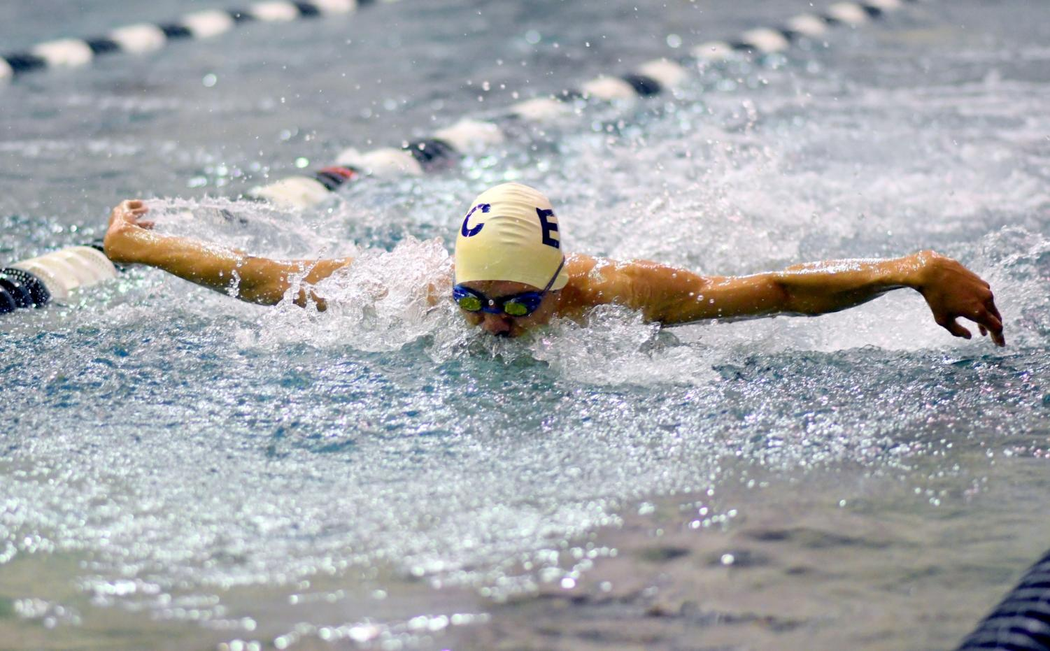 Warriors win various swimming and diving challenges during home meet
