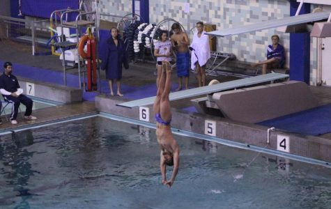 2 Warriors divers advance to state championships