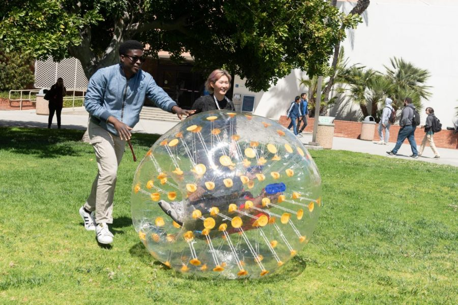 Chinua Taylor-Pearce, 19, economics major, ASO director of finance and Christine Summers, 19, linguists major, Inter-Club Council president, push Wiley Wilson, 21, sociology major, inside human size plastic ball at Earth Day Extravaganza Monday, April 22. Photo credit: Elena Perez