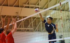 Warriors men's volleyball team finishes season 16-3, reaches playoff semifinal