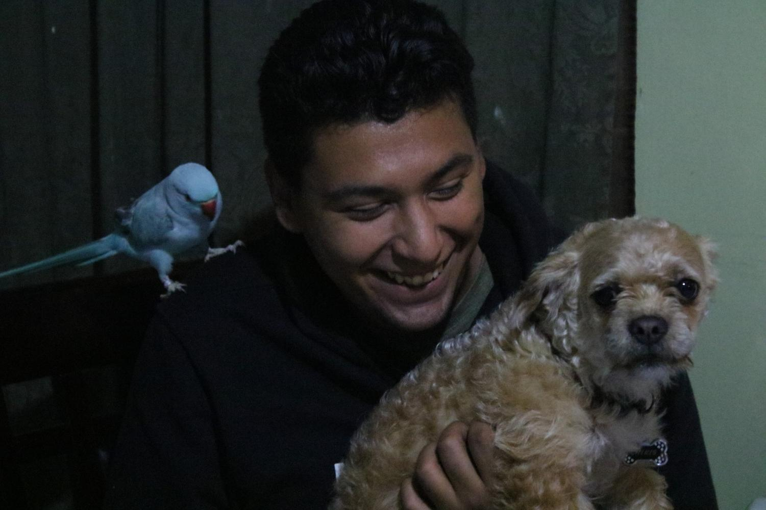 Carlos Paz, 21, sits with his Indian Ringneck parakeet Blu and dog Chikis after a long day at El Camino College and working as a mechanic on Monday, May 6. Paz said he owes his success to his father who encourages him to pursue his outmost goals in life. Photo credit: Rosemary Montalvo