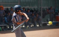 Warriors softball sweeps San Diego Mesa, move on to Super Regionals