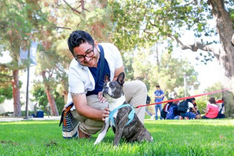 Don Agustin, film major, pets Annabel, a Boston terrier, to relieve some stress during El Camino College Health Center's de-stress event Tuesday, Sept. 24 at the Library Lawn. Mari Inagaki/The Union