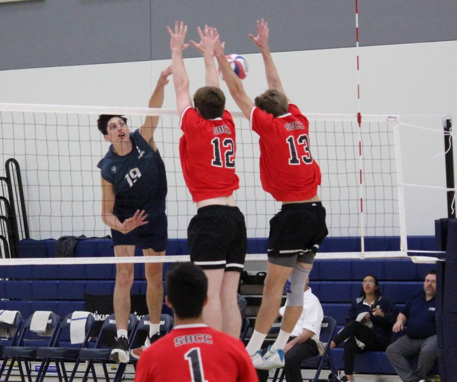 El+Camino+College%27s+men%27s+volleyball+opposite+hitter+Gabriel+Vargas-Featherstone+goes+for+the+kill+against+a+pair+of+Santa+Barbara+Community+College+defenders+during+a+match+on+Friday%2C+February+28+in+the+El+Camino+College+Gym+Complex.+Vargas-Featherstone+finished+the+match+with+21+kills+in+the+loss+to+Santa+Barbara+Community+College.+Kealoha+Noguchi%2FThe+Union