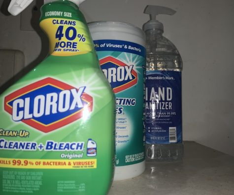Cleaning with EPA registered household cleaners and use of hand sanitizer can help prevent the spread of Coronavirus. Molly Cochran/ The Union